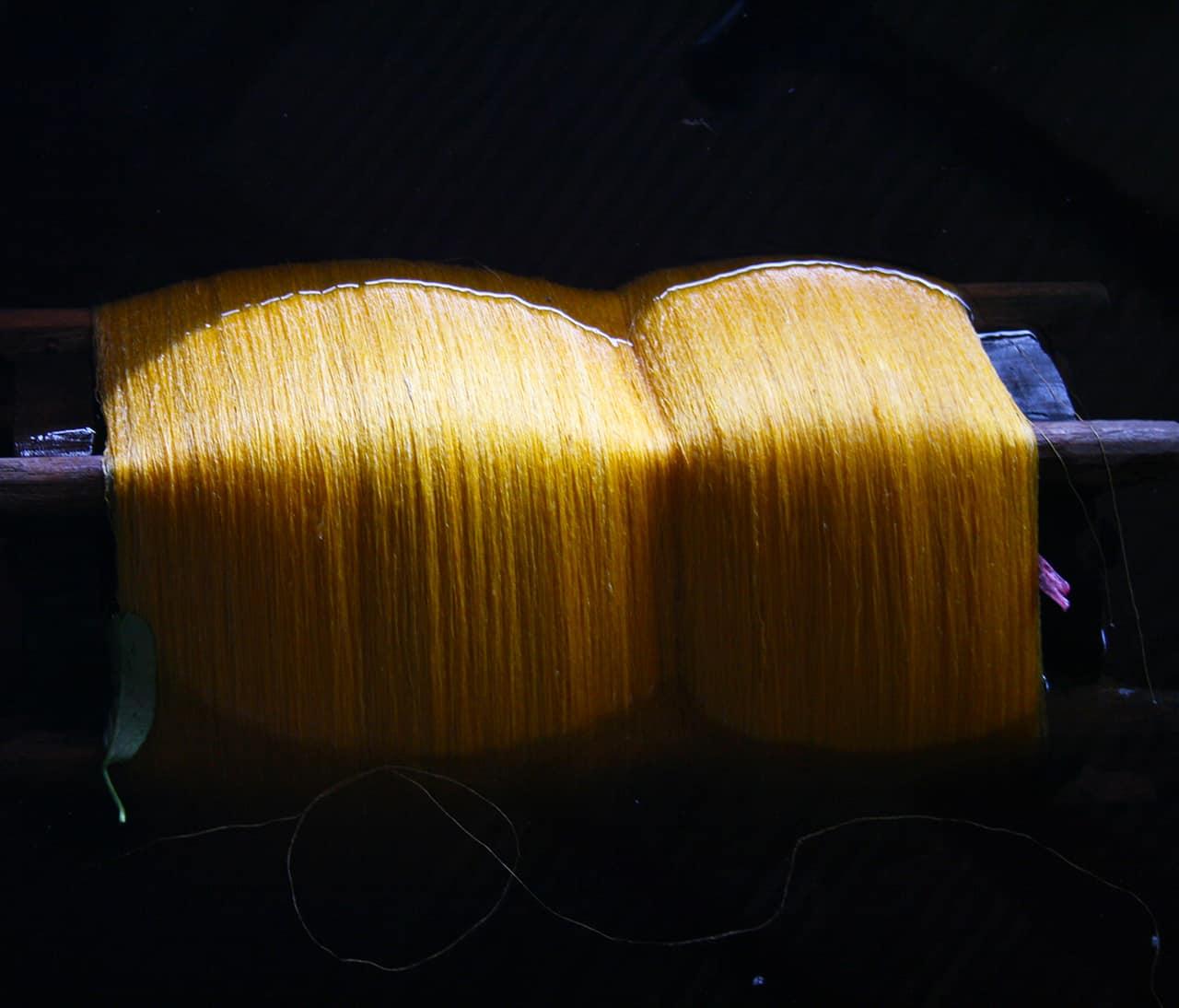 Golden Silk Dying
